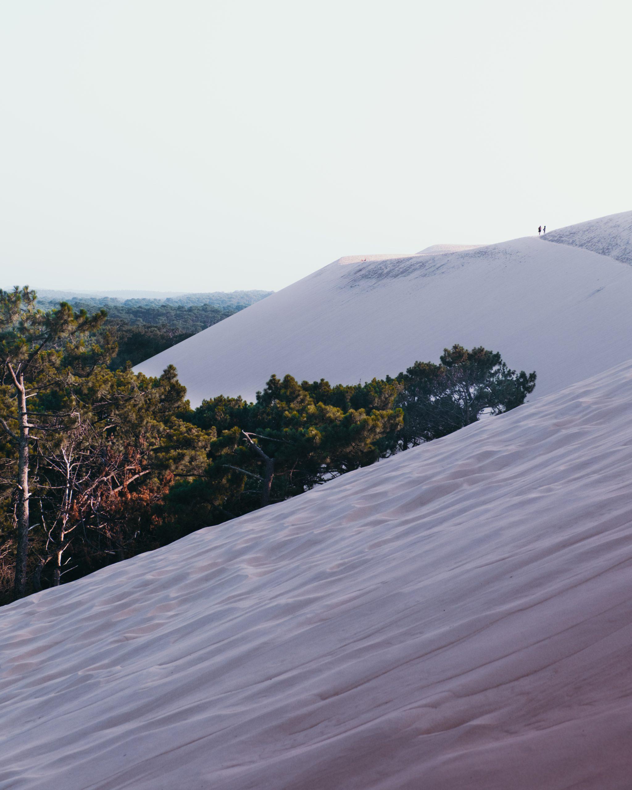 Dune du Pilat: bezoek de hoogste duin van Europa.